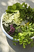 Assorted herbs and flowers in a plastic bowl
