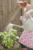 Young woman watering plants (out of doors)