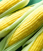 Four cobs of corn
