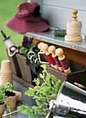 Utensilien für die Gartenarbeit