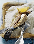 Sea bass baked in salt crust