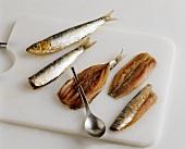 Gräten von frischen Sardinen entfernen