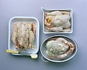 Raw garlic-, lemon- and herb chicken
