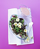 Herb salad with primroses and walnuts