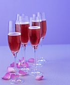 Several glasses of red sparkling wine cocktail with rose petals