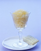 White tea sorbet in glass with white chocolate biscuit
