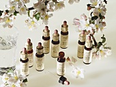 Various Bach Flower Essences in dropper bottles