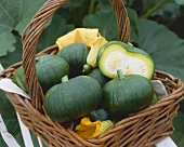 Round courgettes in a wicker basket