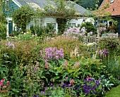 Bunter Sommergarten mit Astilbe, Viola, Phlox