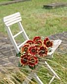 Red sunflowers 'Prado Red'