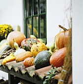 Pumpkins and squashes on storage area by house wall