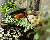 Fresh vegetables on a wooden crate