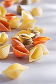 Coloured pasta shells