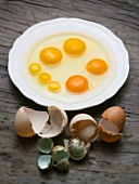 Various kinds of eggs, broken onto plate