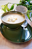 Sheep's cheese soup
