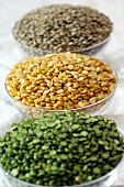 Green, yellow and brown lentils