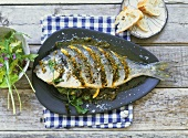 Braised seabream (gilthead) with spicy crust