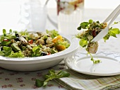 Mixed salad with vegetables, poultry meat and quinoa