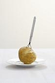 Pellkartoffel auf Kartoffelgabel