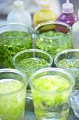 Keeping herbs fresh in glasses of water
