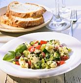 Panzanella con capperi e basilico (Bread salad, Italy)