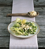Broad bean salad with Bergkäse (Alpine cheese)