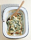 Ravioles de blettes (Swiss chard and cheese dumplings)