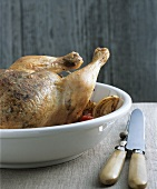 Slovenian chicken
