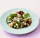 Octopus, white bean and watercress salad