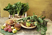Various types of turnip in dishes on a stone slab