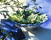 Salad leaves with fennel and Parmesan