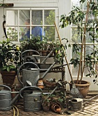 Watering cans, garden tools & plants outside a conservatory
