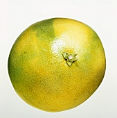 A pomelo against a white background