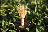 A bamboo tea brush for matcha powder