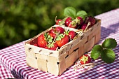 Strawberries in a wooden basket on a garden table