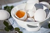 Ganze und aufgeschlagene Eier in Schüssel