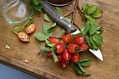 A sprig of rosehips and jam jars