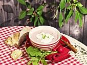 Radish soup with cream