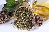 Tea leaves and tea made of common butterbur (petasites hybridus)