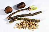 Horse chestnut bark (Aesculus hippocastanum)