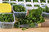 Parsley in plastic boxes and in ice cube trays