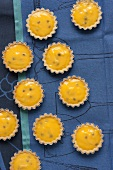 Passionfruit tartlets seen from above