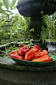 Red chilli peppers in a bowl on a fountain