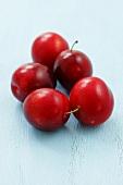 Five Japanese plums (prunus salicina)