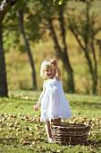 Blondes Mädchen sammelt Äpfel auf der Wiese