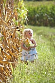 A blonde girl standing next to a corn field holding a corn cob