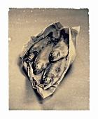 Forellen in Zeitungspapier eingeschlagen