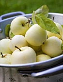 A bowl of white apples