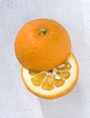 A bitter orange, halved