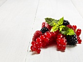 Redcurrants, blackberries and raspberries with mint leaves